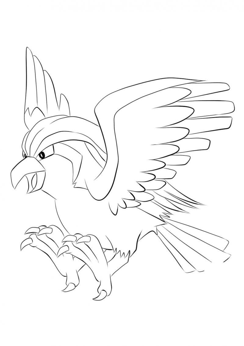 ภาพวาดระบายสีโปเกมอน 06