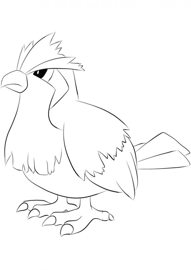 ภาพวาดระบายสีโปเกมอน 05